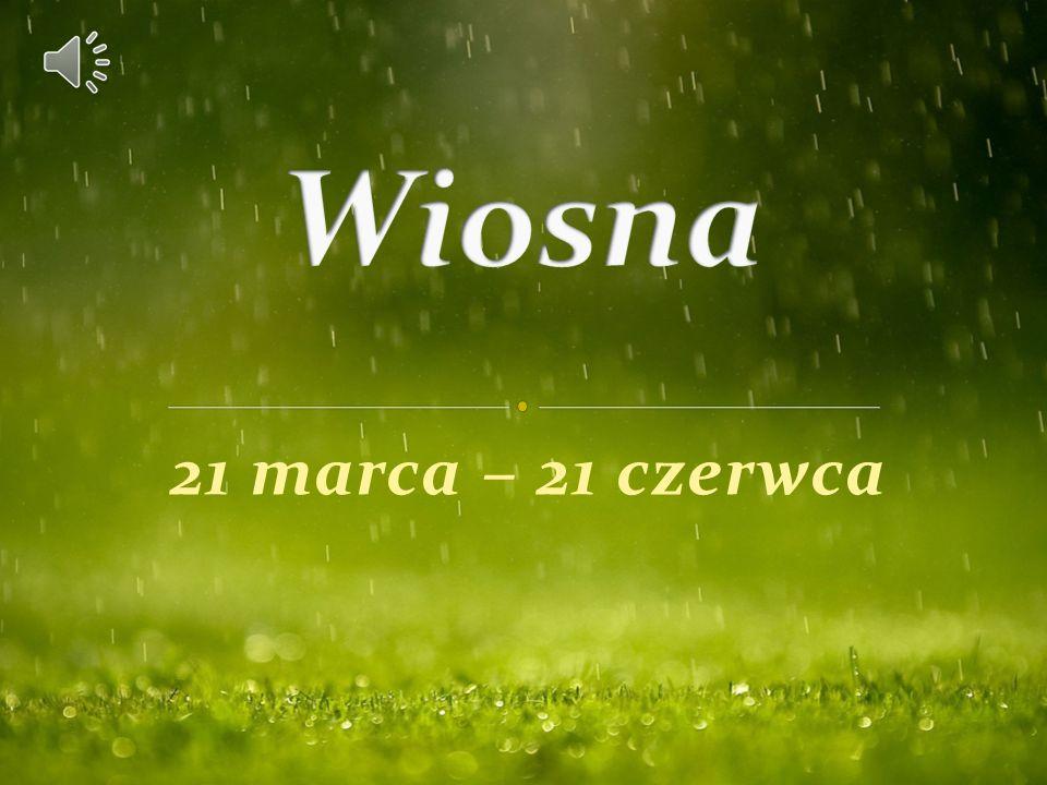 Wiosna 21 marca – 21 czerwca
