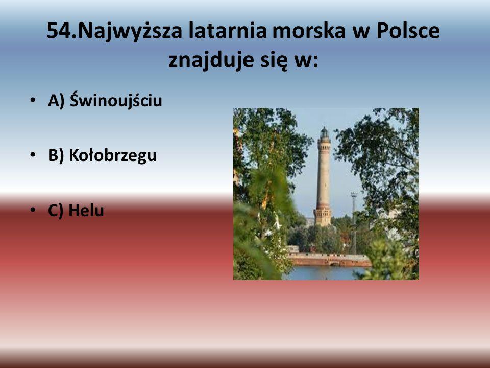 54.Najwyższa latarnia morska w Polsce znajduje się w: