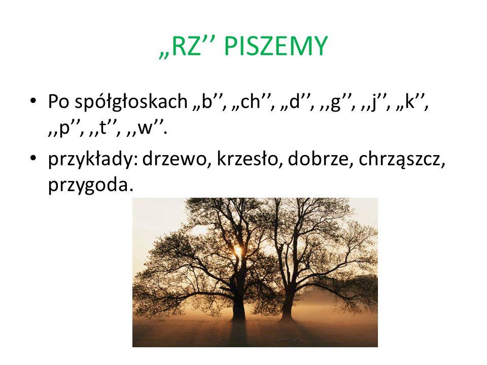 """""""RZ'' PISZEMY Po spółgłoskach """"b'', """"ch'', """"d'', ,,g'', ,,j'', """"k'', ,,p'', ,,t'', ,,w''."""