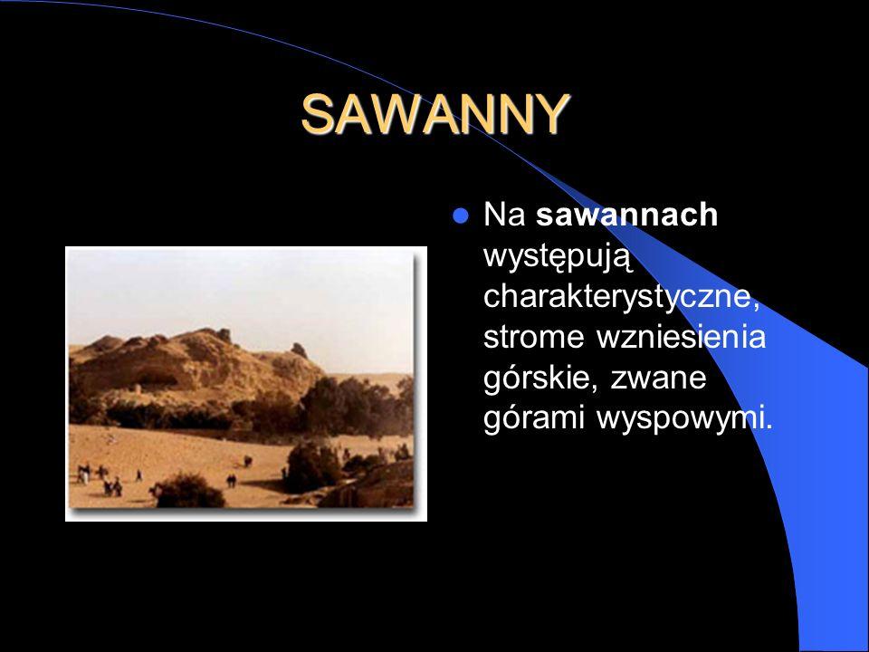 SAWANNY Na sawannach występują charakterystyczne, strome wzniesienia górskie, zwane górami wyspowymi.