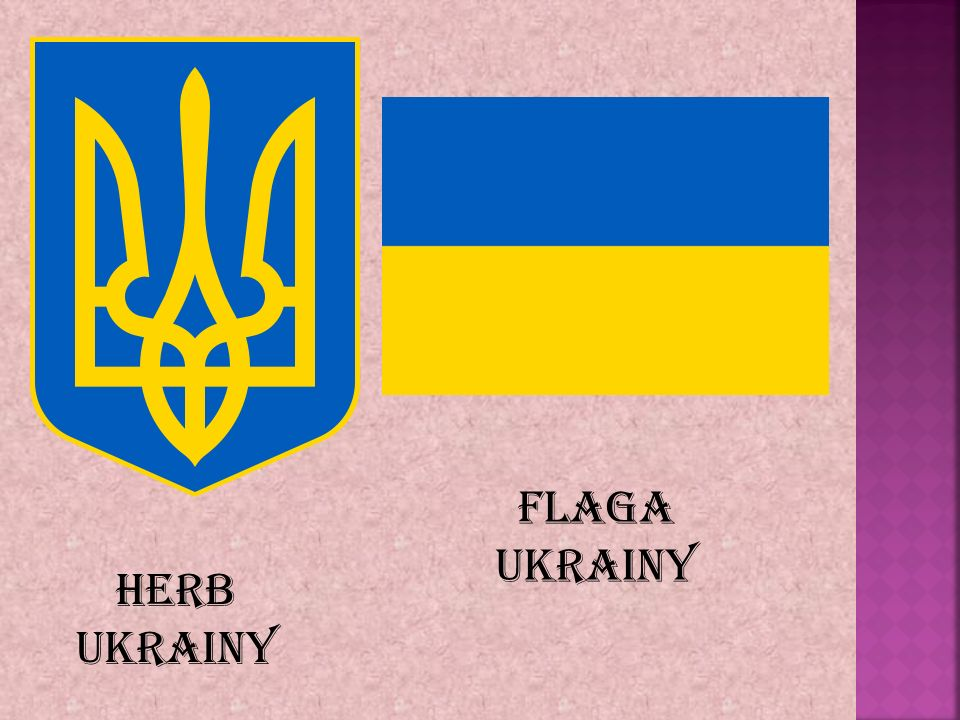 Flaga Ukrainy Herb Ukrainy