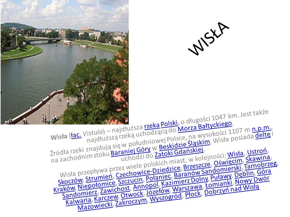 WISŁA Wisła (łac. Vistula) – najdłuższa rzeka Polski, o długości 1047 km. Jest także najdłuższą rzeką uchodzącą do Morza Bałtyckiego.