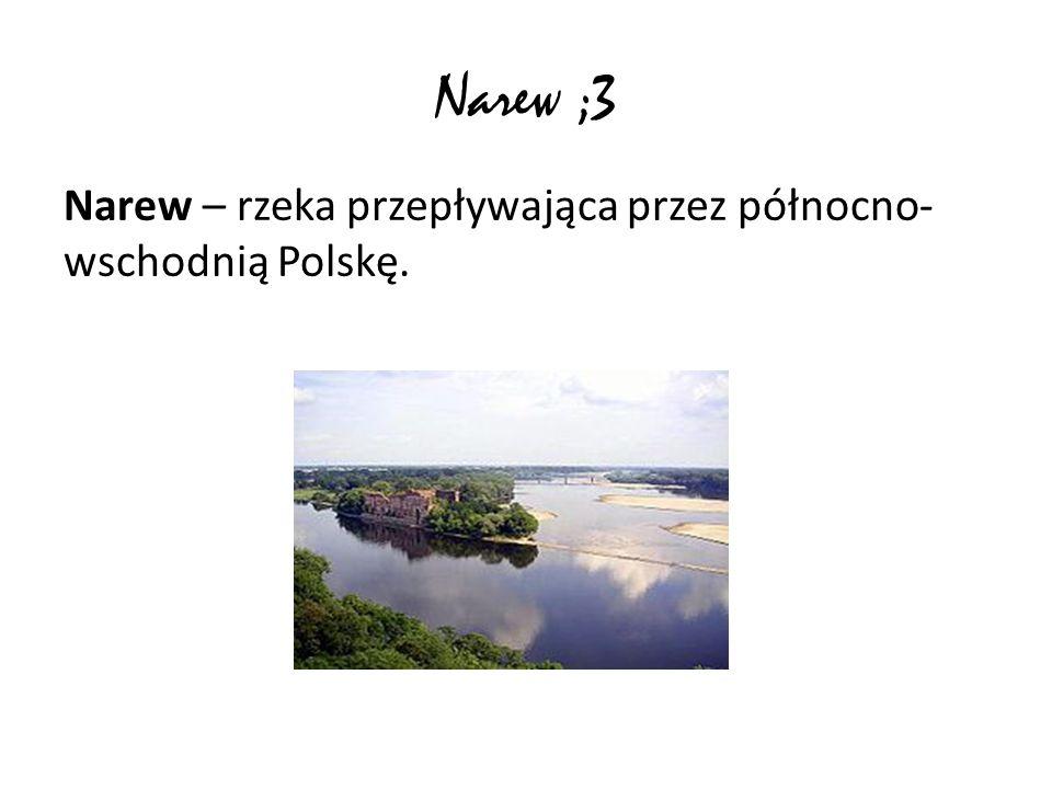Narew ;3 Narew – rzeka przepływająca przez północno-wschodnią Polskę.