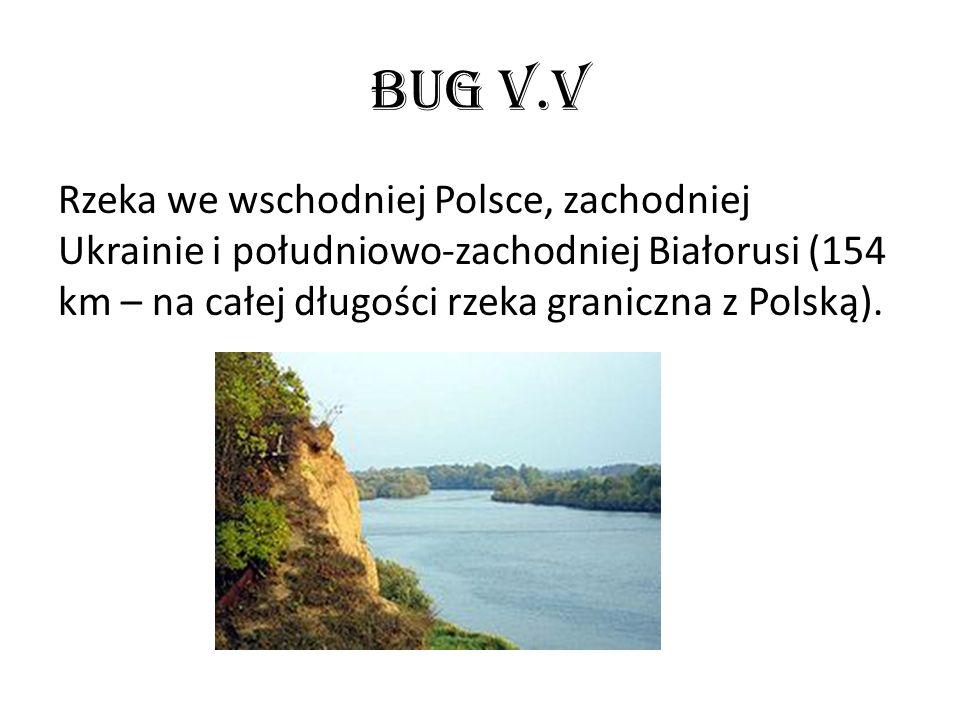 Bug v.v Rzeka we wschodniej Polsce, zachodniej Ukrainie i południowo-zachodniej Białorusi (154 km – na całej długości rzeka graniczna z Polską).