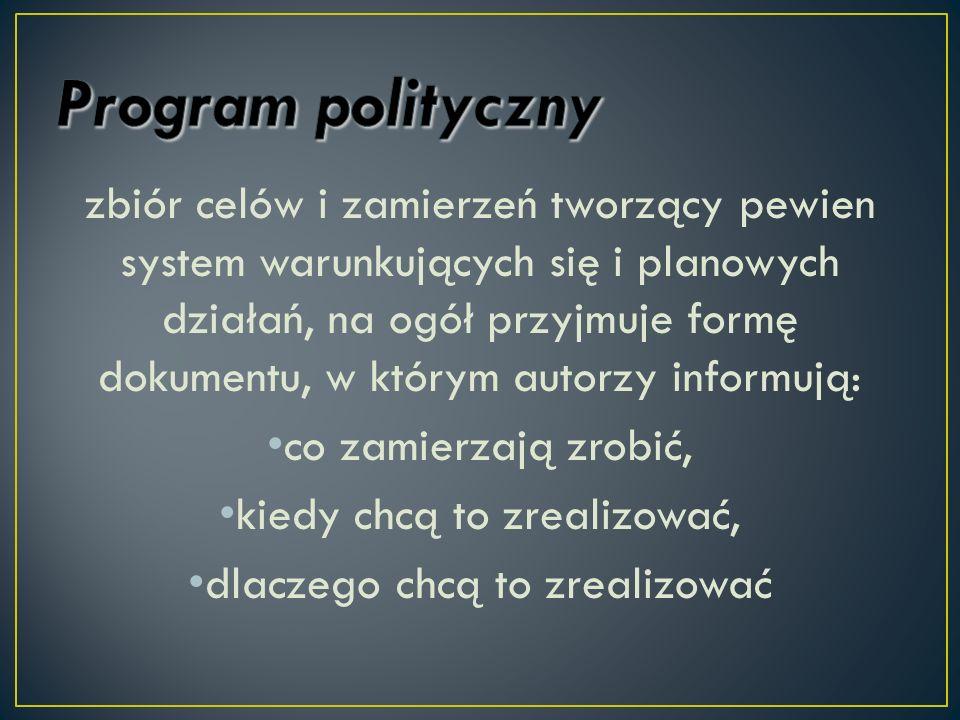 Program polityczny
