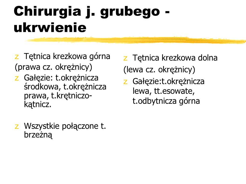 Chirurgia j. grubego - ukrwienie