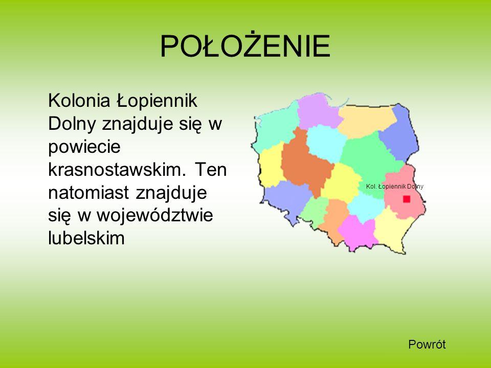 POŁOŻENIE Kolonia Łopiennik Dolny znajduje się w powiecie krasnostawskim. Ten natomiast znajduje się w województwie lubelskim.