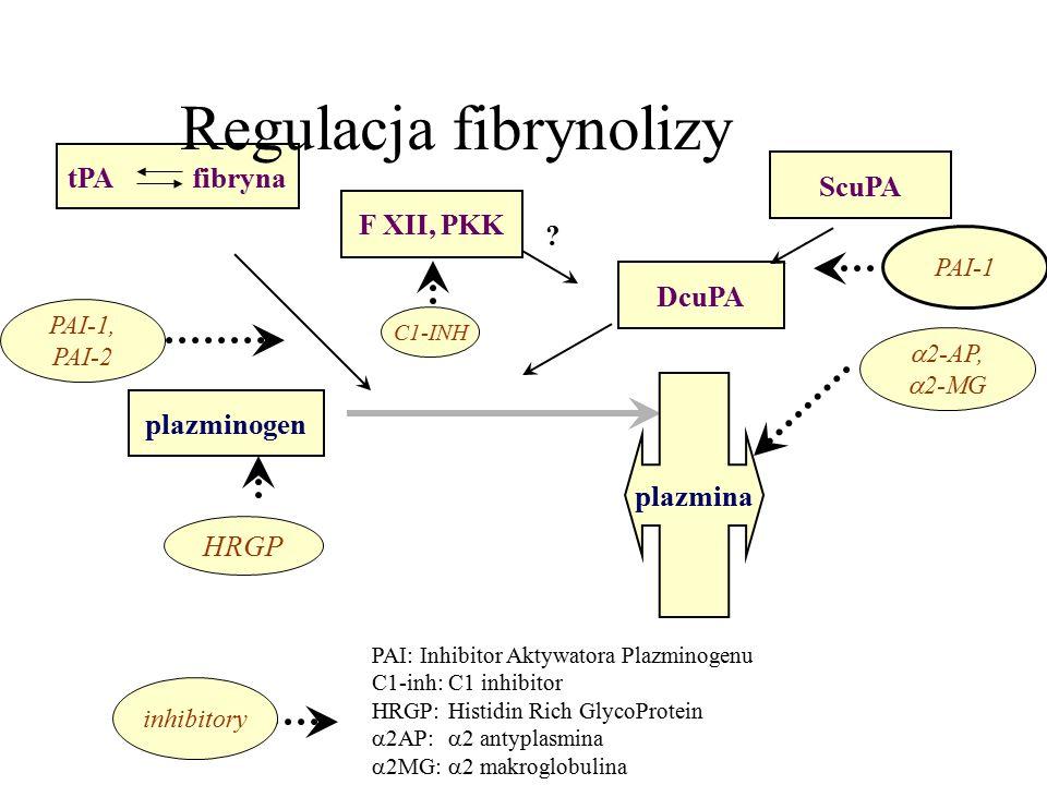 Regulacja fibrynolizy