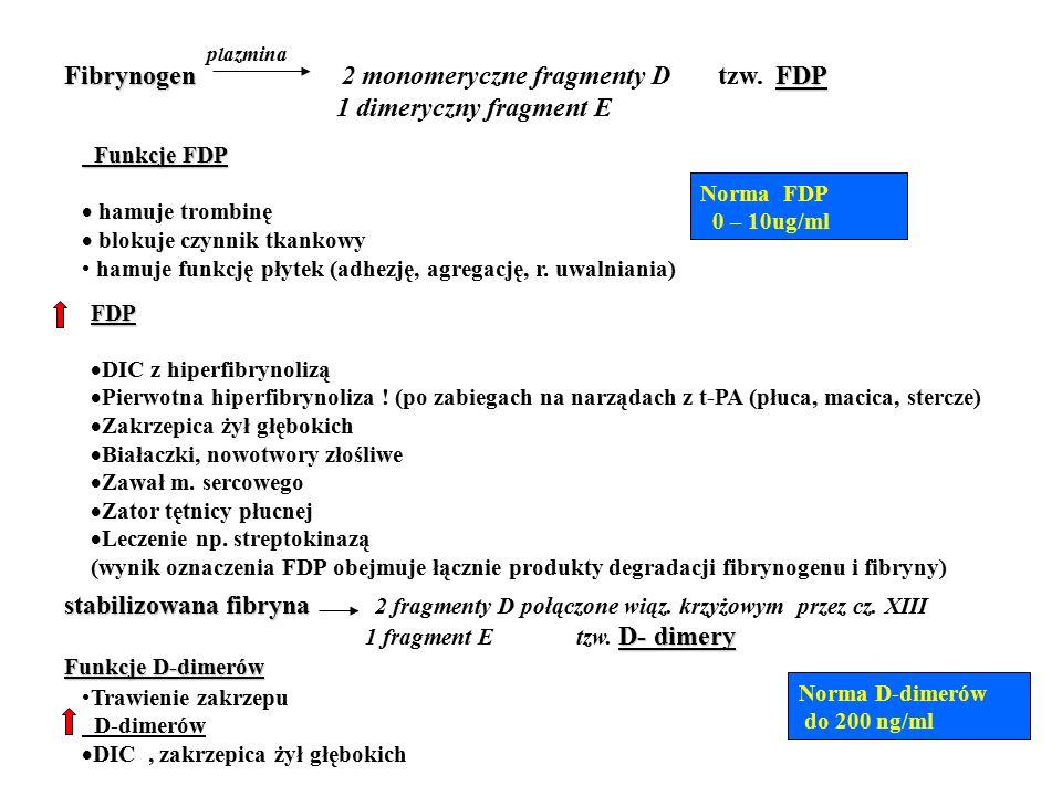Fibrynogen 2 monomeryczne fragmenty D tzw. FDP 1 dimeryczny fragment E