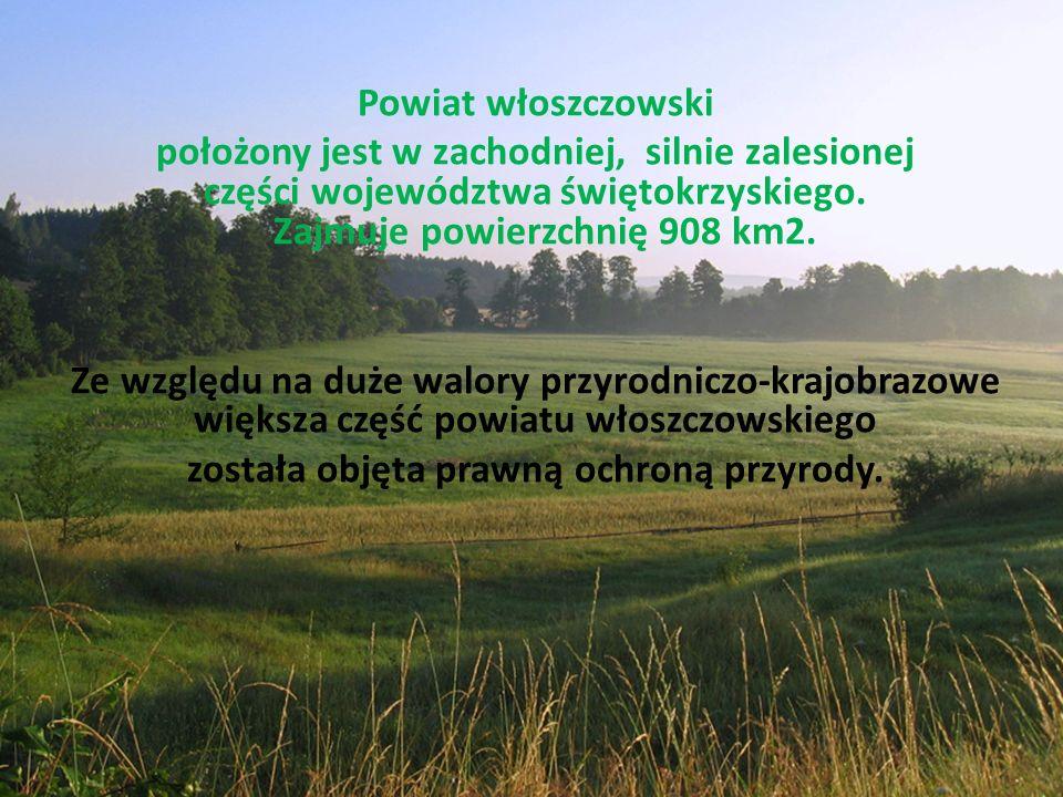 Powiat włoszczowski położony jest w zachodniej, silnie zalesionej części województwa świętokrzyskiego.