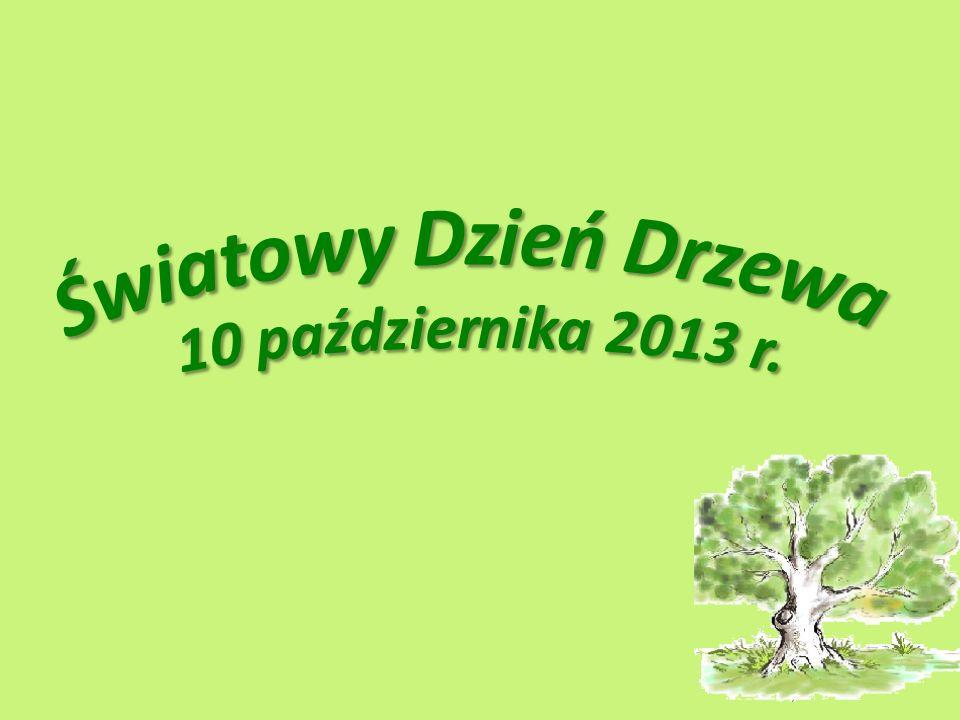 Światowy Dzień Drzewa 10 października 2013 r.