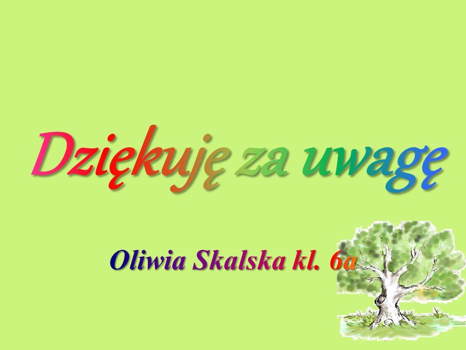 Dziękuję za uwagę Oliwia Skalska kl. 6a