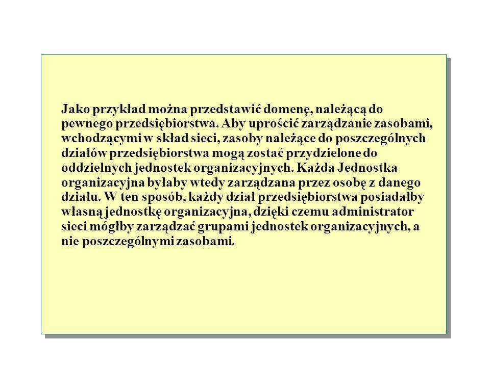 Jako przykład można przedstawić domenę, należącą do pewnego przedsiębiorstwa.