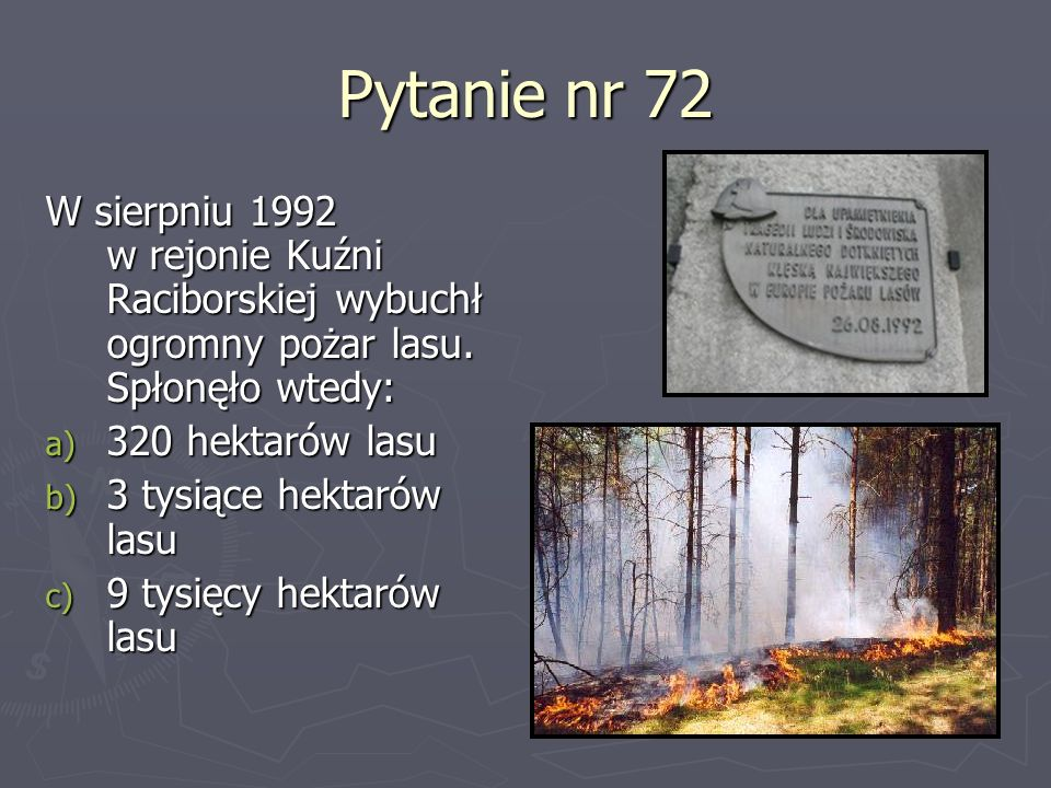 Pytanie nr 72 W sierpniu 1992 w rejonie Kuźni Raciborskiej wybuchł ogromny pożar lasu. Spłonęło wtedy: