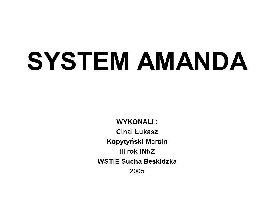 SYSTEM AMANDA WYKONALI : Cinal Łukasz Kopytyński Marcin III rok INf/Z