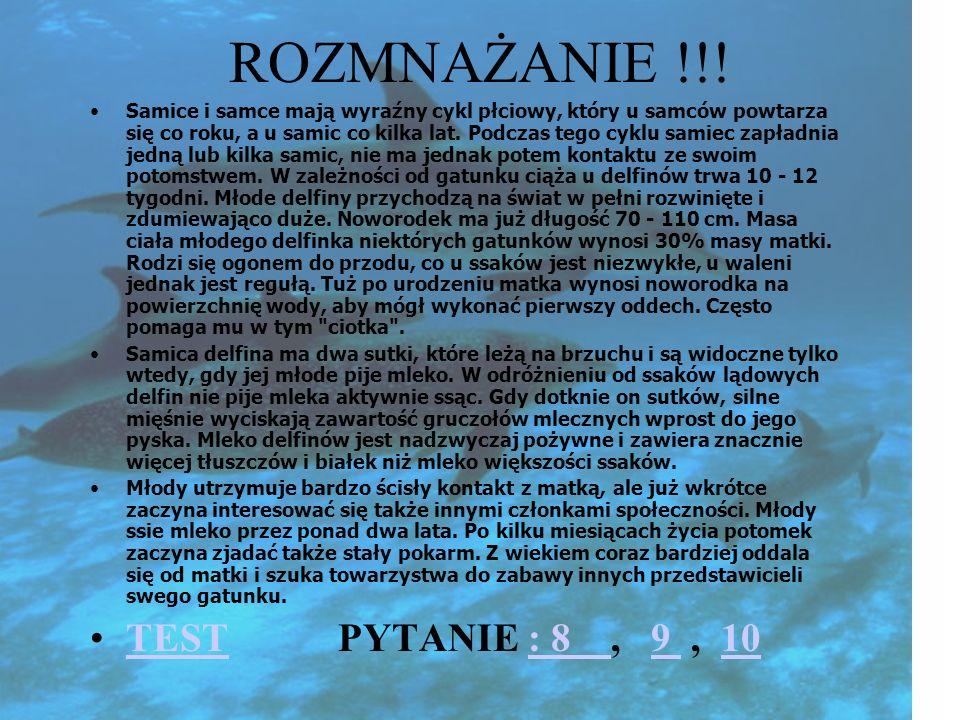 ROZMNAŻANIE !!! TEST PYTANIE : 8 , 9 , 10