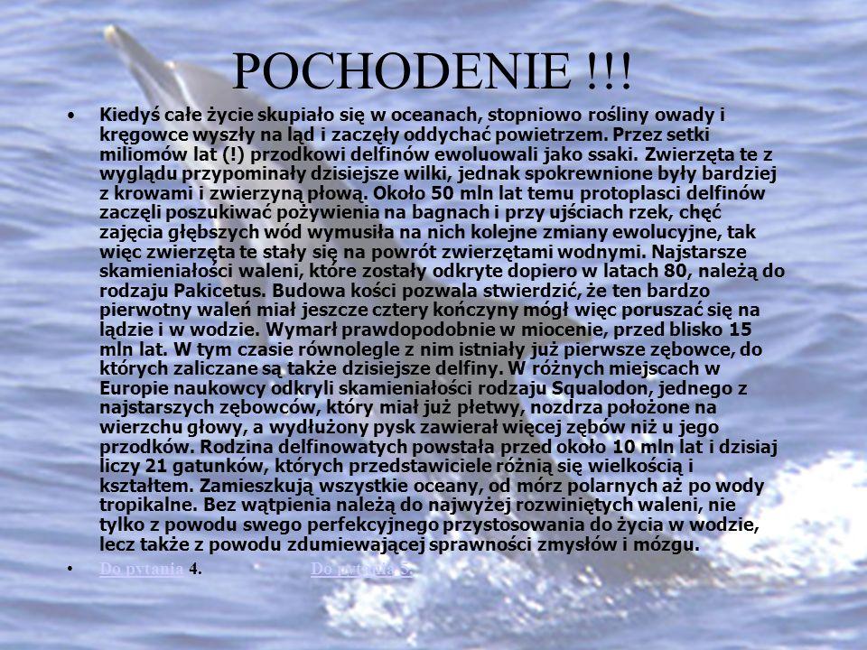 POCHODENIE !!!