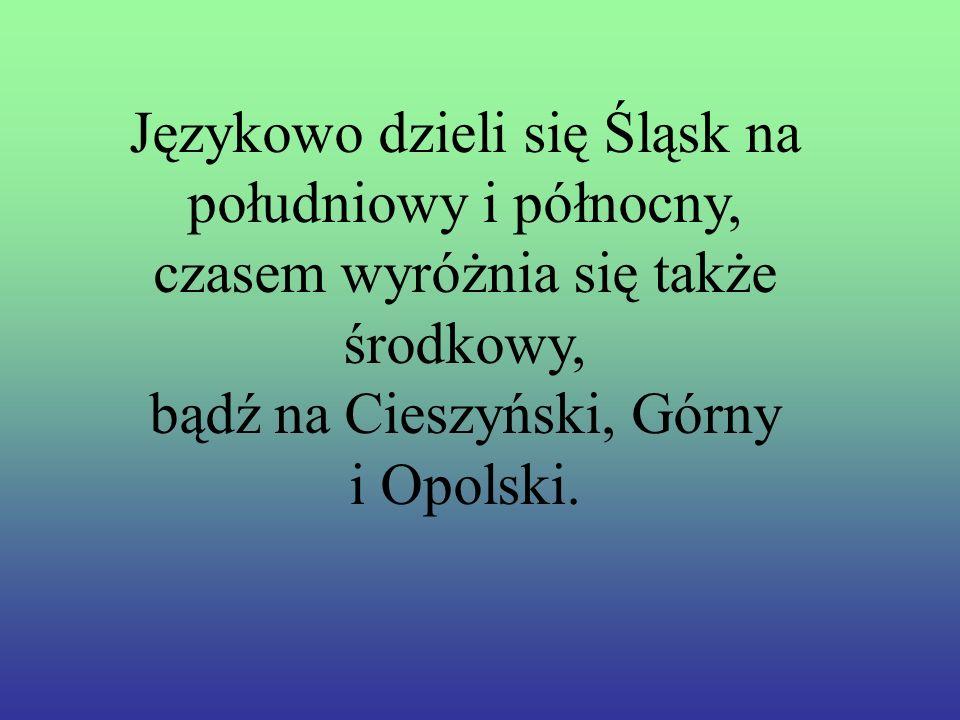 Językowo dzieli się Śląsk na południowy i północny,