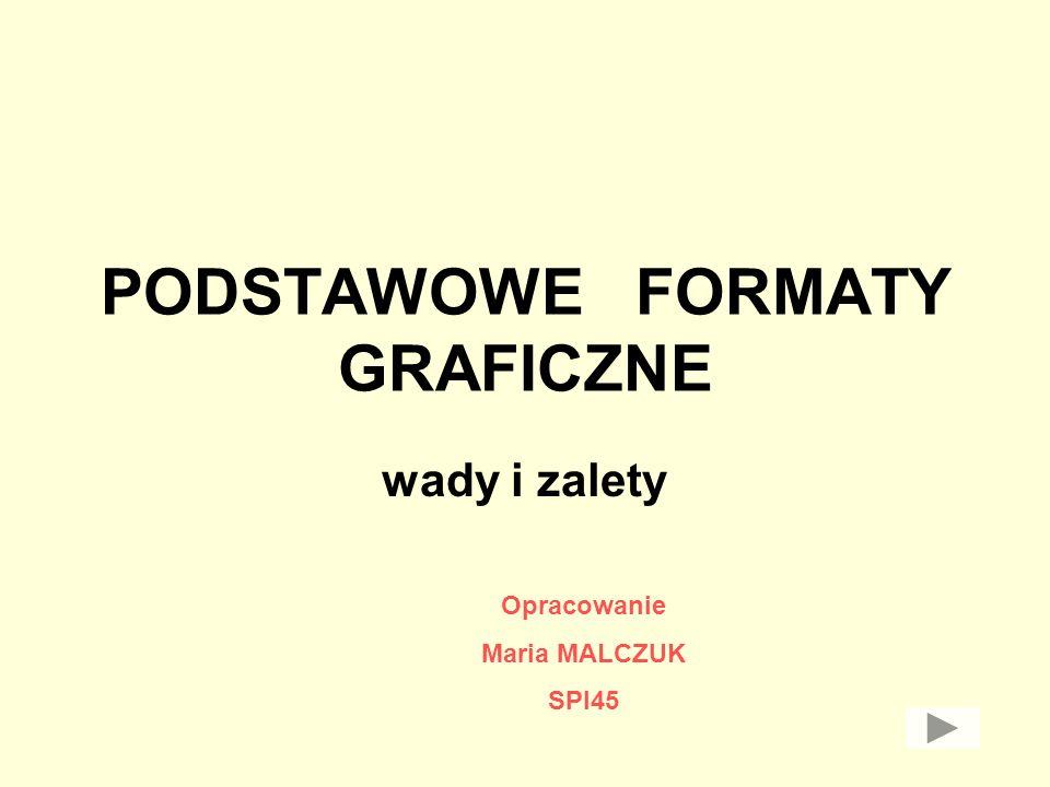 PODSTAWOWE FORMATY GRAFICZNE