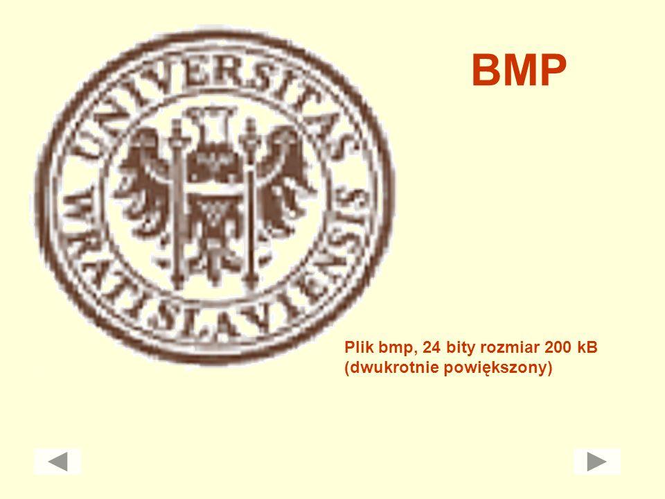 BMP Plik bmp, 24 bity rozmiar 200 kB (dwukrotnie powiększony)
