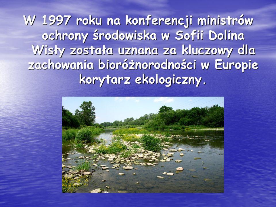 W 1997 roku na konferencji ministrów ochrony środowiska w Sofii Dolina Wisły została uznana za kluczowy dla zachowania bioróżnorodności w Europie korytarz ekologiczny.