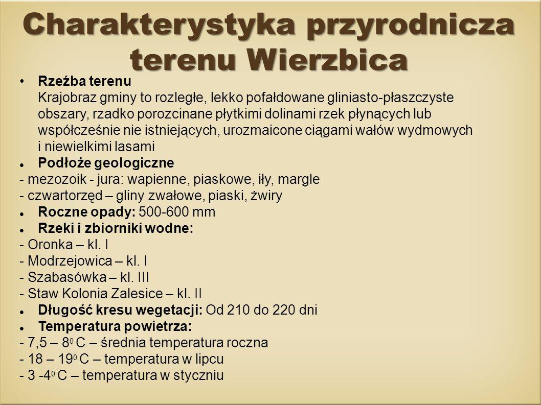 Charakterystyka przyrodnicza terenu Wierzbica