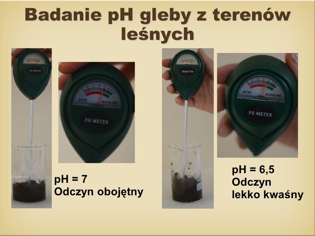 Badanie pH gleby z terenów leśnych