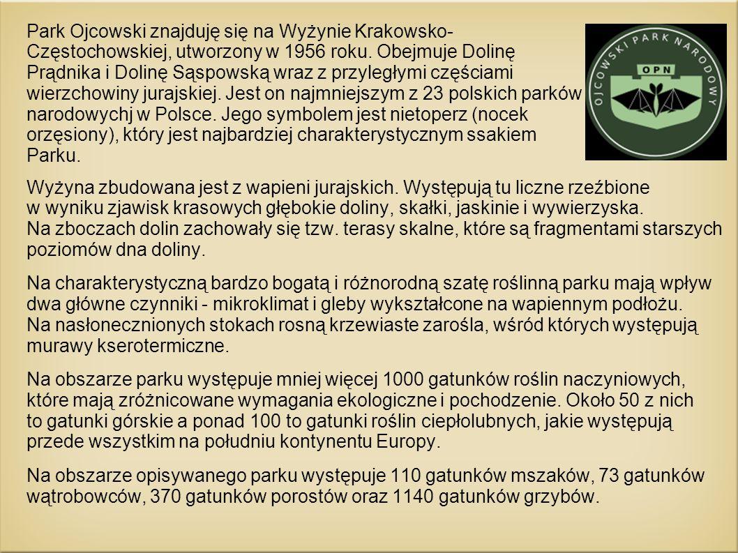 Park Ojcowski znajduję się na Wyżynie Krakowsko-Częstochowskiej, utworzony w 1956 roku. Obejmuje Dolinę Prądnika i Dolinę Sąspowską wraz z przyległymi częściami wierzchowiny jurajskiej. Jest on najmniejszym z 23 polskich parków narodowychj w Polsce. Jego symbolem jest nietoperz (nocek orzęsiony), który jest najbardziej charakterystycznym ssakiem Parku.