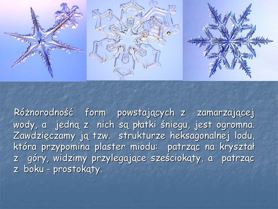 Różnorodność form powstających z zamarzającej wody, a jedną z nich są płatki śniegu, jest ogromna.