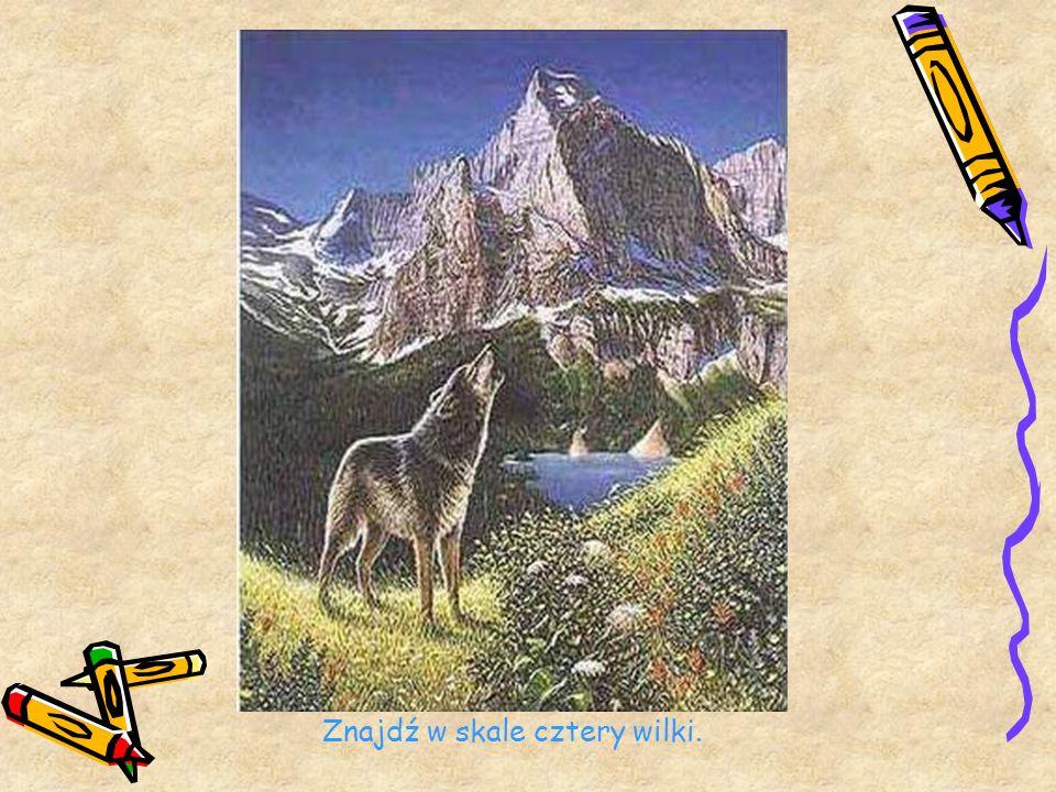 Znajdź w skale cztery wilki.