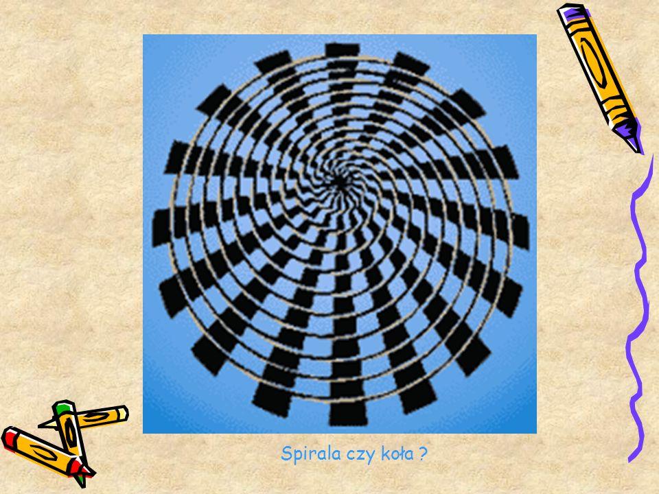 Spirala czy koła