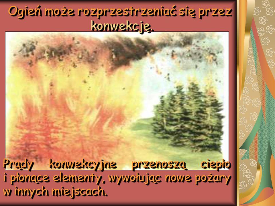 Ogień może rozprzestrzeniać się przez konwekcję.