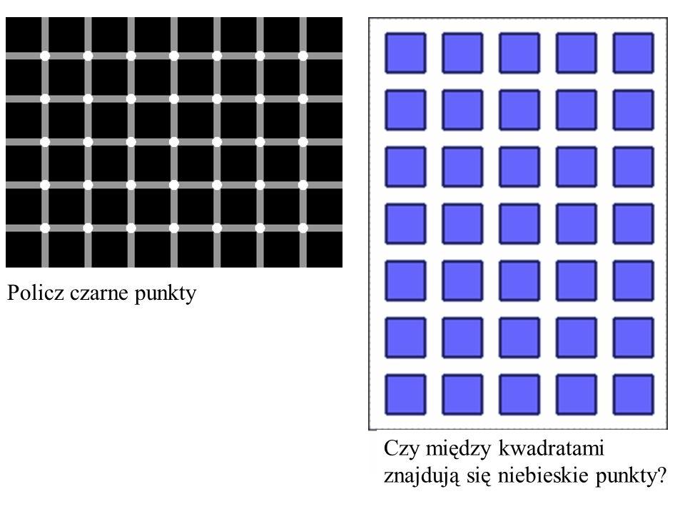 Policz czarne punkty Czy między kwadratami znajdują się niebieskie punkty