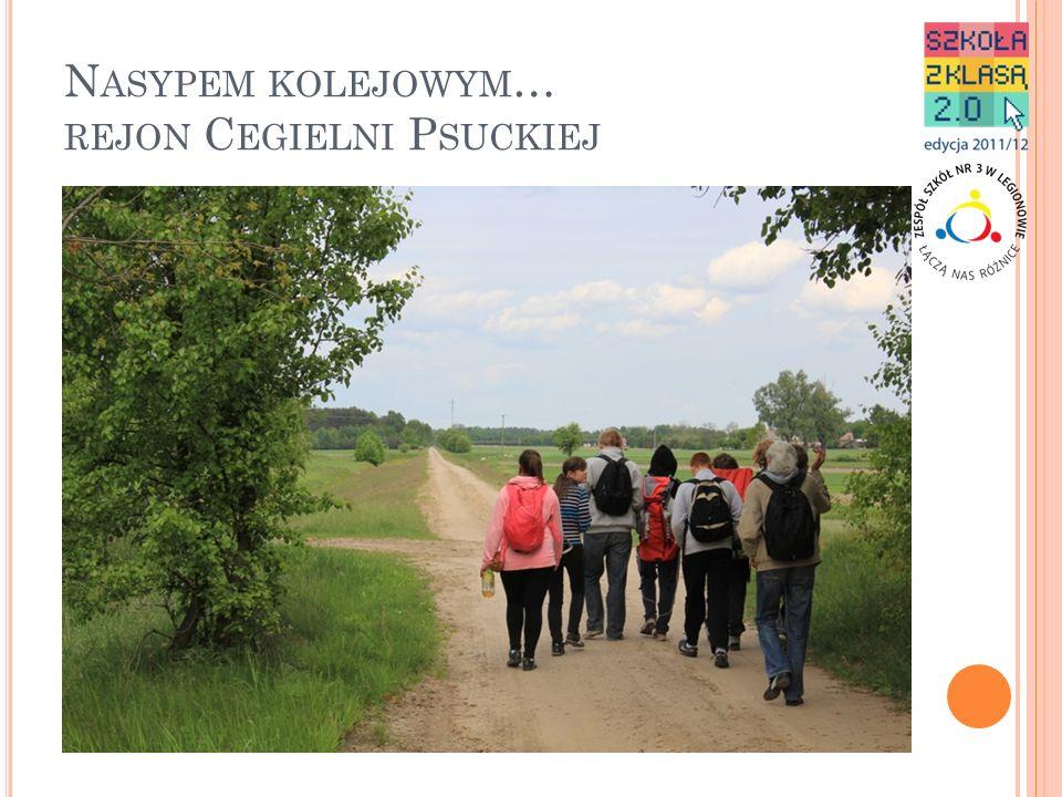 Nasypem kolejowym… rejon Cegielni Psuckiej