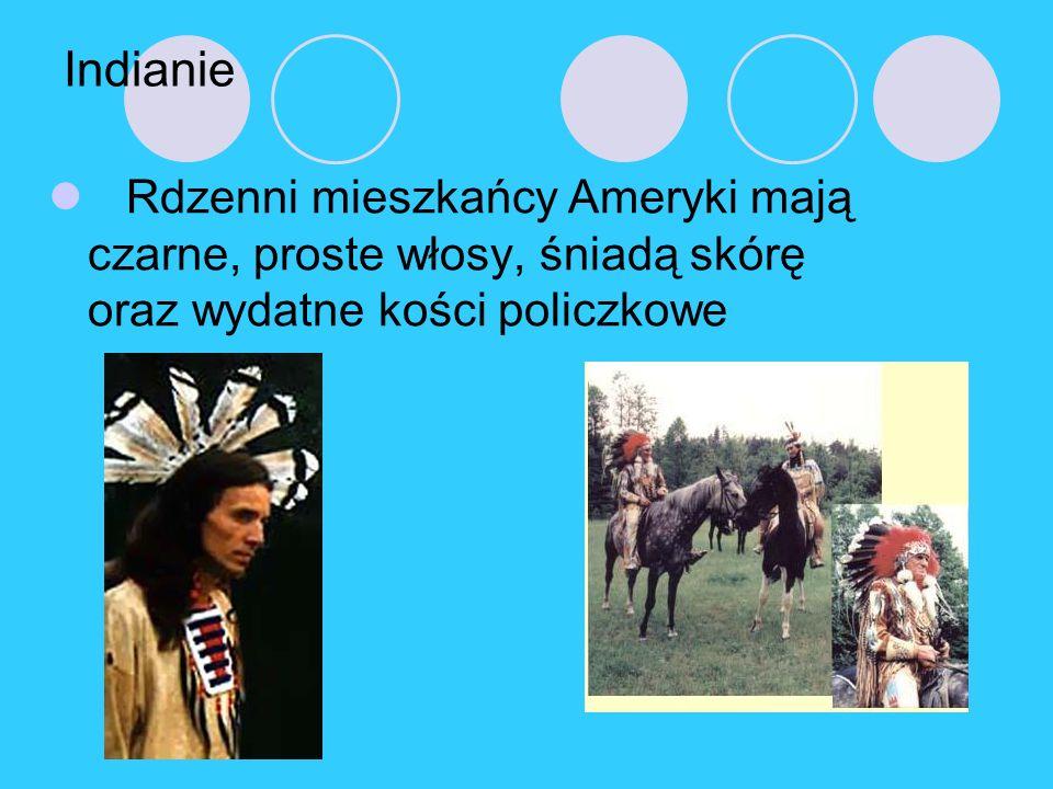 Indianie Rdzenni mieszkańcy Ameryki mają czarne, proste włosy, śniadą skórę oraz wydatne kości policzkowe.