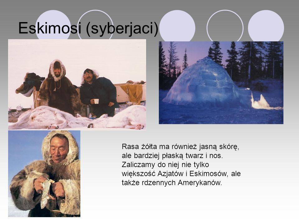 Eskimosi (syberjaci)