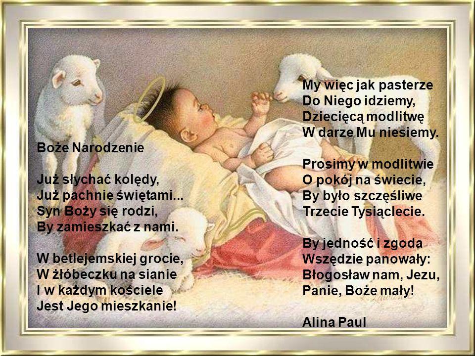 My więc jak pasterze Do Niego idziemy, Dziecięcą modlitwę. W darze Mu niesiemy. Prosimy w modlitwie.