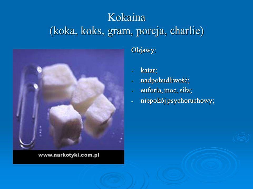 Kokaina (koka, koks, gram, porcja, charlie)