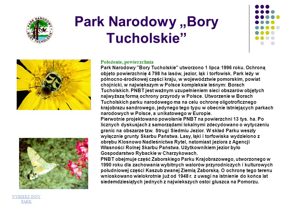 """Park Narodowy """"Bory Tucholskie"""