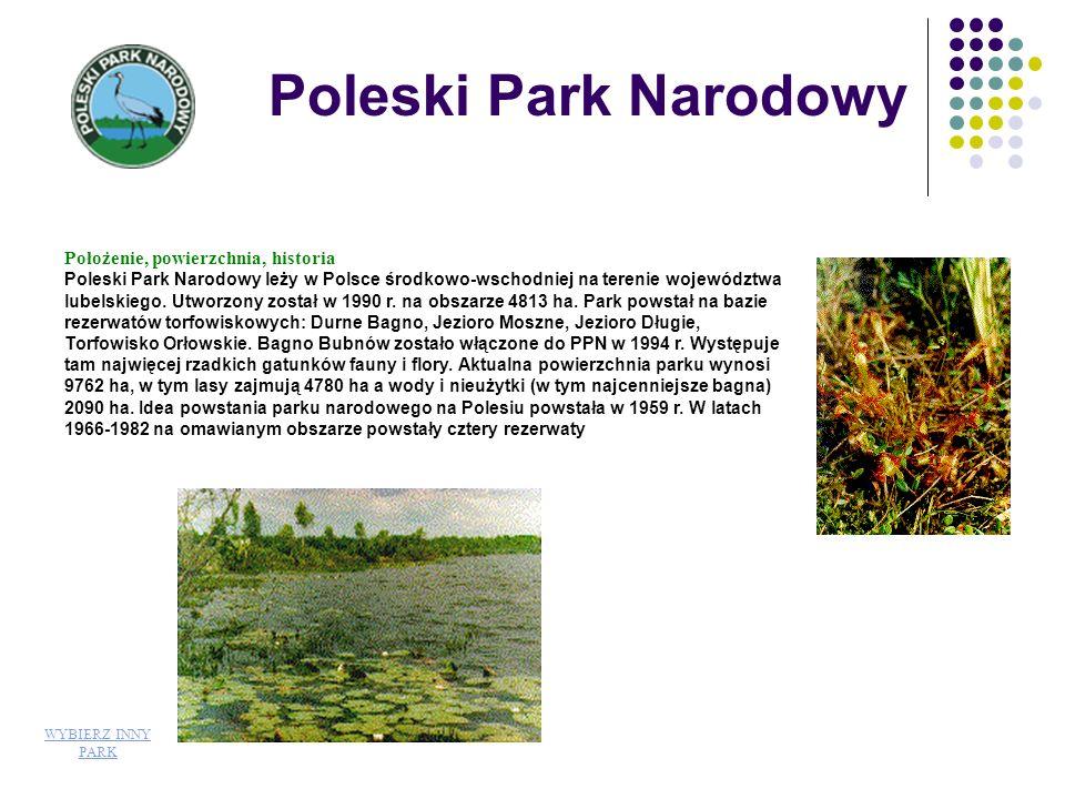 Poleski Park Narodowy Położenie, powierzchnia, historia