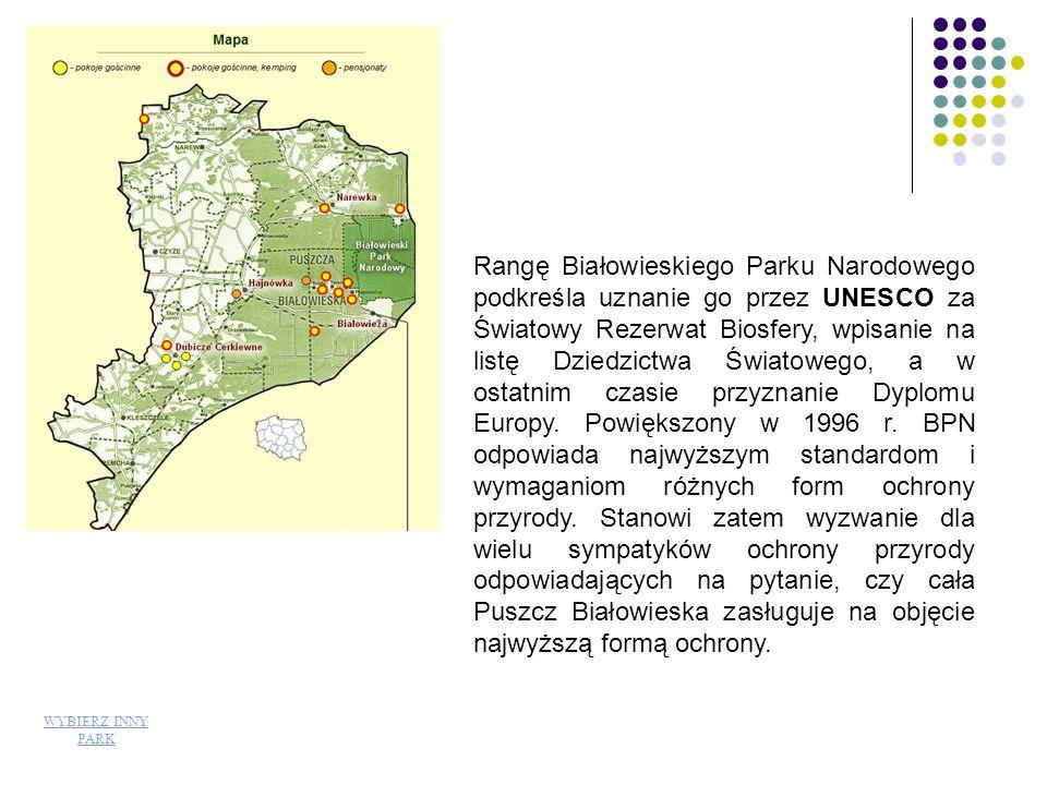 Rangę Białowieskiego Parku Narodowego podkreśla uznanie go przez UNESCO za Światowy Rezerwat Biosfery, wpisanie na listę Dziedzictwa Światowego, a w ostatnim czasie przyznanie Dyplomu Europy. Powiększony w 1996 r. BPN odpowiada najwyższym standardom i wymaganiom różnych form ochrony przyrody. Stanowi zatem wyzwanie dla wielu sympatyków ochrony przyrody odpowiadających na pytanie, czy cała Puszcz Białowieska zasługuje na objęcie najwyższą formą ochrony.