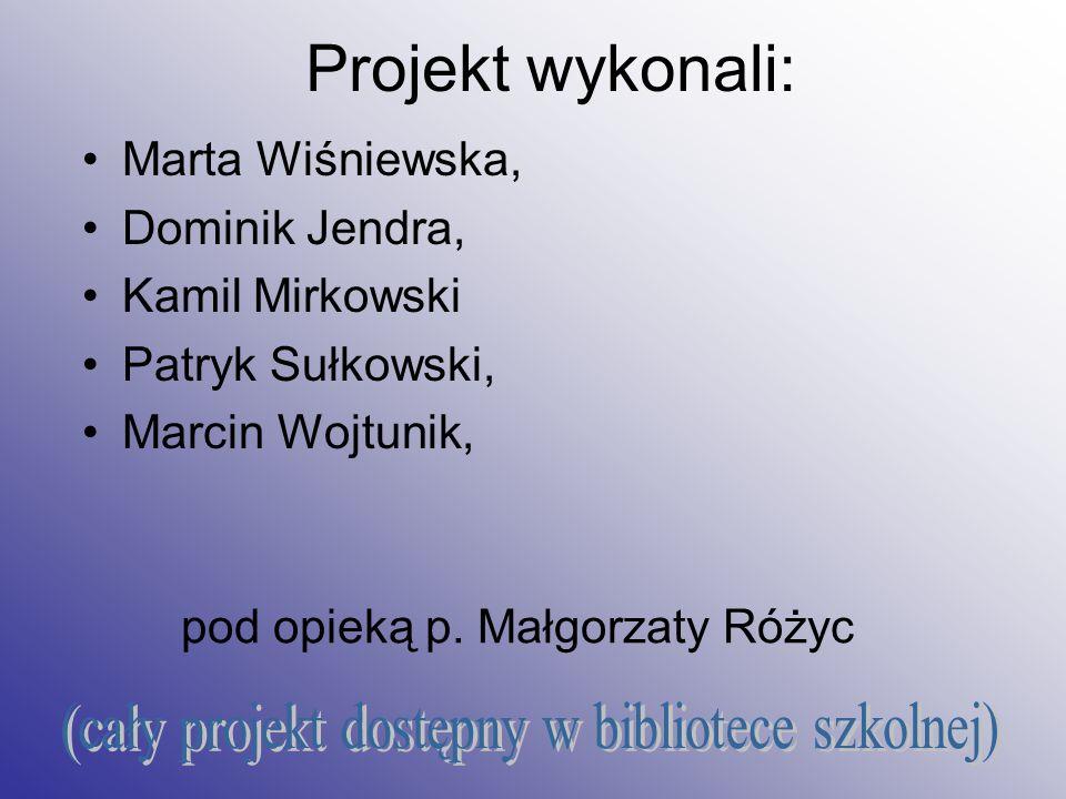 Projekt wykonali: (cały projekt dostępny w bibliotece szkolnej)