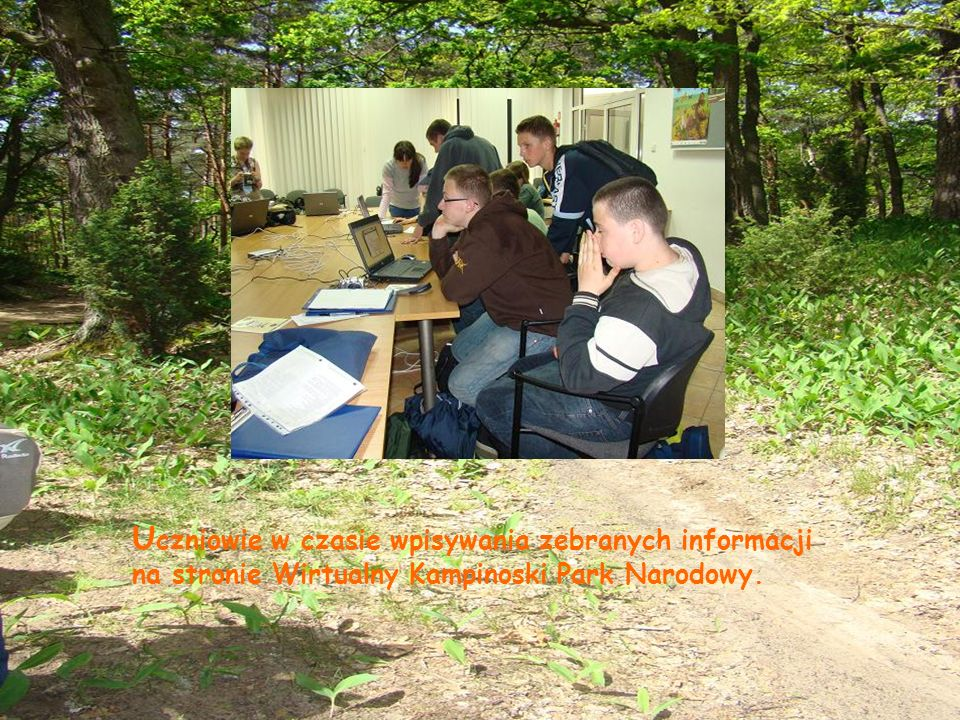 Uczniowie w czasie wpisywania zebranych informacji