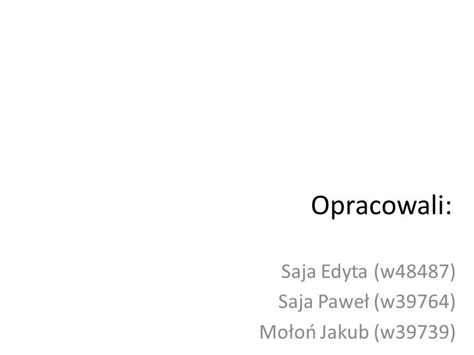 Saja Edyta (w48487) Saja Paweł (w39764) Mołoń Jakub (w39739)