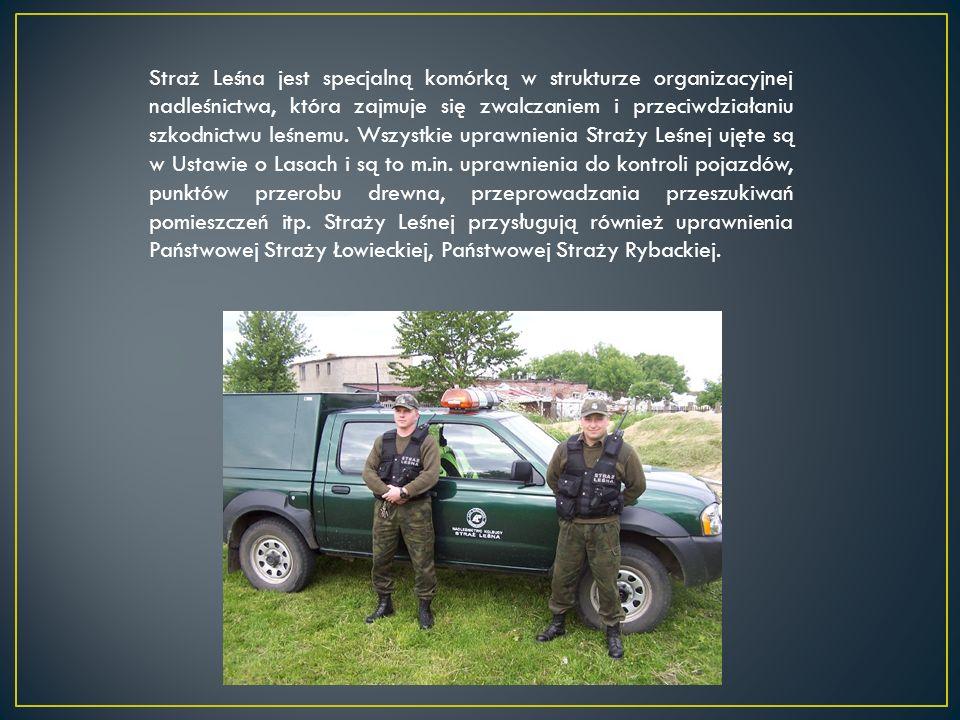 Straż Leśna jest specjalną komórką w strukturze organizacyjnej nadleśnictwa, która zajmuje się zwalczaniem i przeciwdziałaniu szkodnictwu leśnemu. Wszystkie uprawnienia Straży Leśnej ujęte są w Ustawie o Lasach i są to m.in. uprawnienia do kontroli pojazdów, punktów przerobu drewna, przeprowadzania przeszukiwań pomieszczeń itp. Straży Leśnej przysługują również uprawnienia Państwowej Straży Łowieckiej, Państwowej Straży Rybackiej.