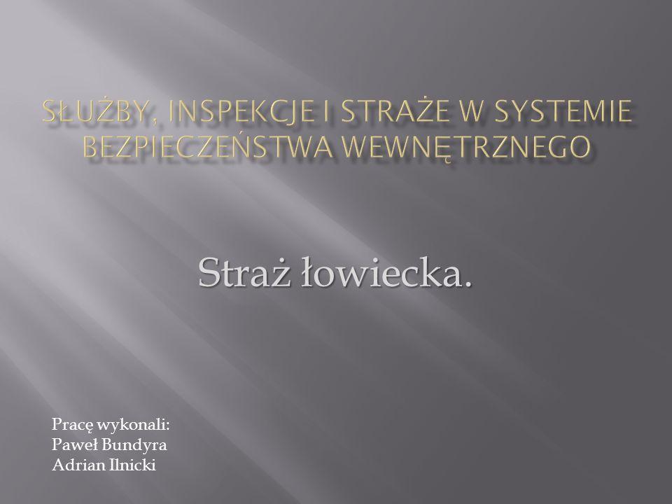 Służby, inspekcje i straże w systemie bezpieczeństwa wewnętrznego