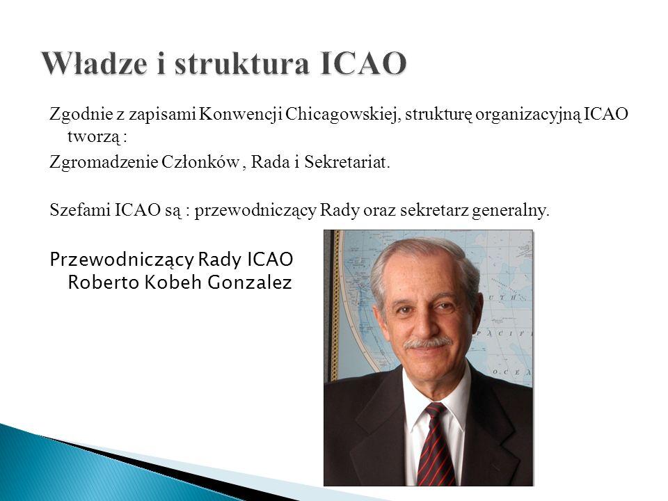 Władze i struktura ICAO