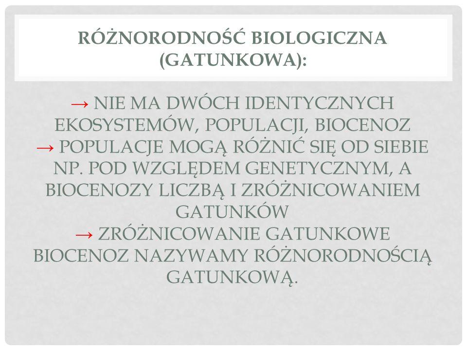 Różnorodność biologiczna (gatunkowa): → nie ma dwóch identycznych ekosystemów, populacji, biocenoz → populacje mogą różnić się od siebie np.