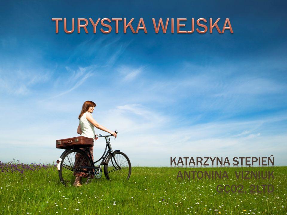KATARZYNA STĘPIEŃ Antonina vizniuk gc02, 2ltd
