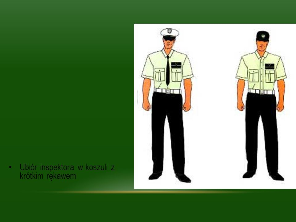 Ubiór inspektora w koszuli z krótkim rękawem